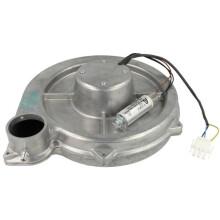 EWFE - MAN Motoren/ Kondensato