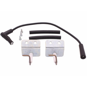 Wolf Ignition and surveillance electrode 2 pcs. 8601902