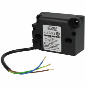Giersch Ignition transformer with cable 479024922