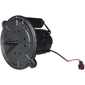 Electro-oil Motor 200 W 42327