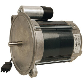 Weishaupt Motor ECK06/A-2 24040007032