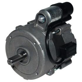 Motor Wolf WK 02, 2413375