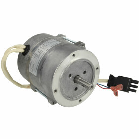 Weishaupt Motor ECK03-2/1 24110007140