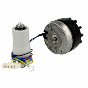 Fan motor with condenser