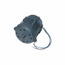 Riello Motor for Mectron 15M 3005820