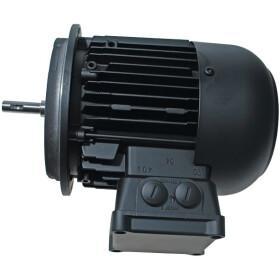 Weishaupt Motor D90/90-2 11155507260