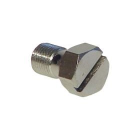 Vaillant shaped screw 155614