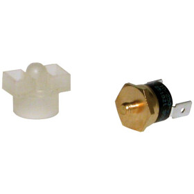 Vaillant Safety switch 251822