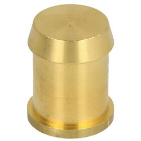 Sieger Blank plug D 21 2 pieces 63045248